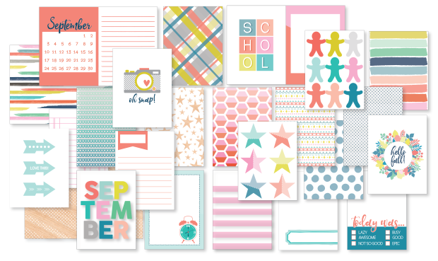 WEB IMAGE PL CARDS